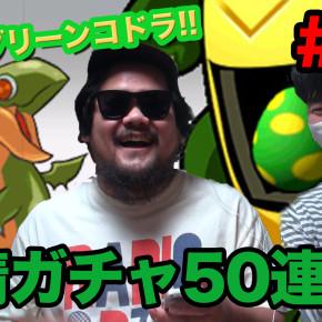radioDTMのパズドラ日記09(友情ガチャ50連続!!狙うはグリーンコドラ!!)